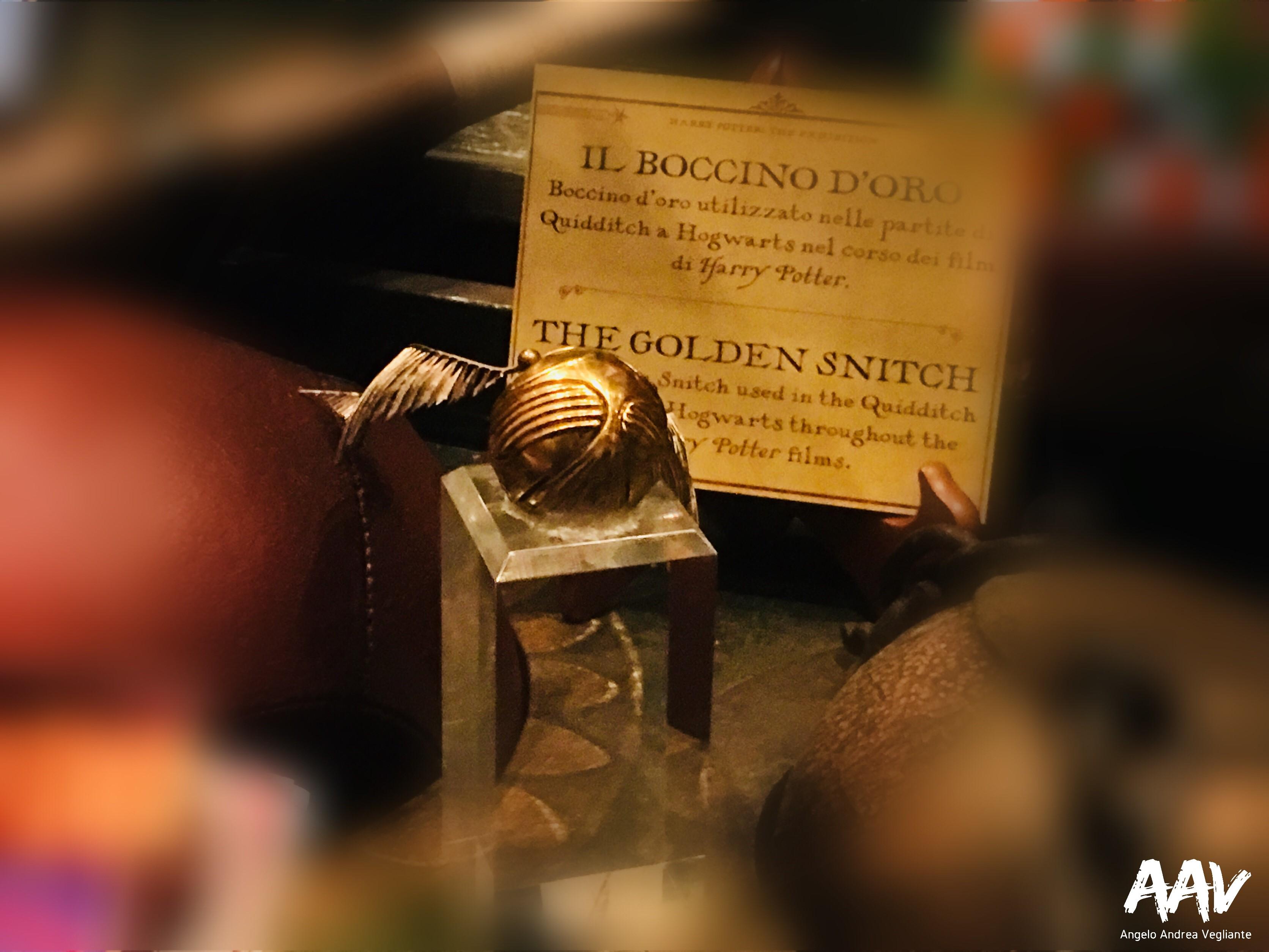 angelo andrea vegliante-harry potter-the exhibition-milano