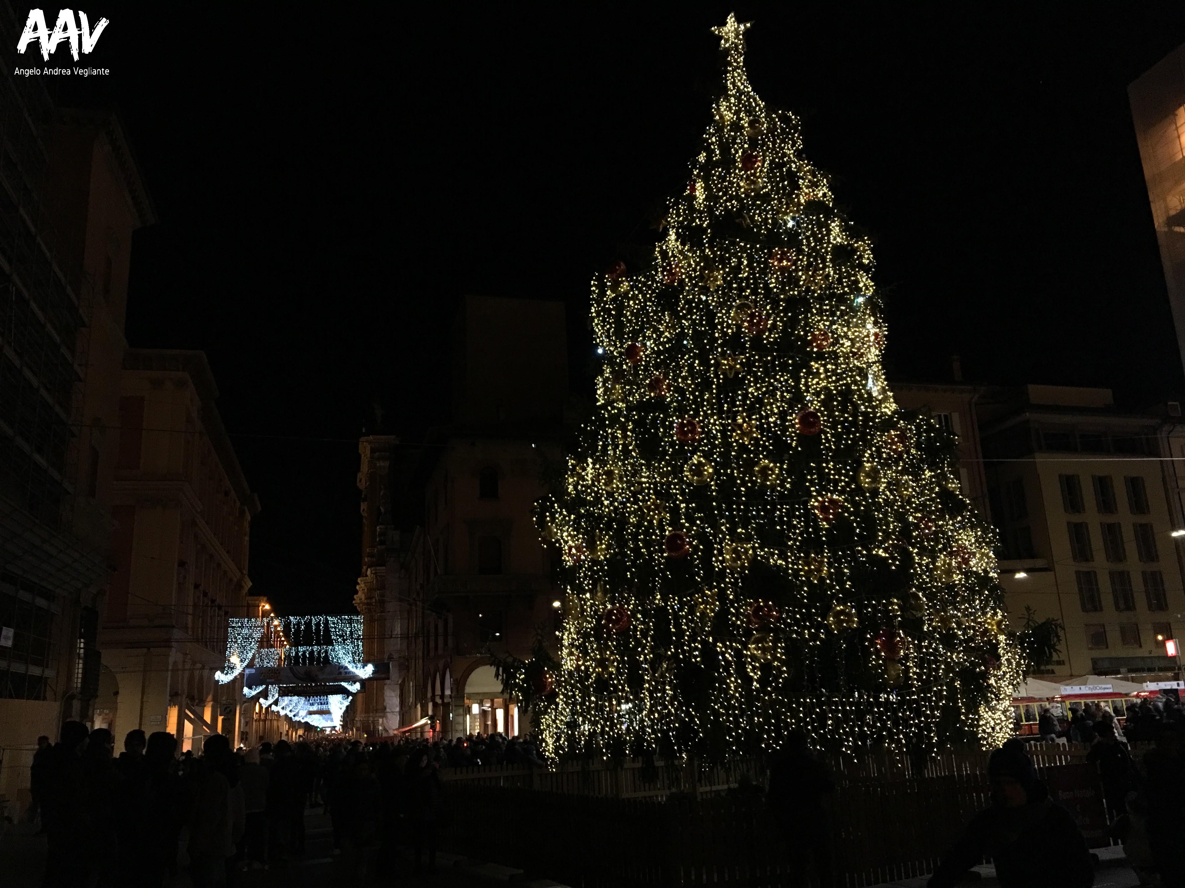 albero di natale-bologna-natale-angelo andrea vegliante-colui che veglia-colui che viaggia-viaggio