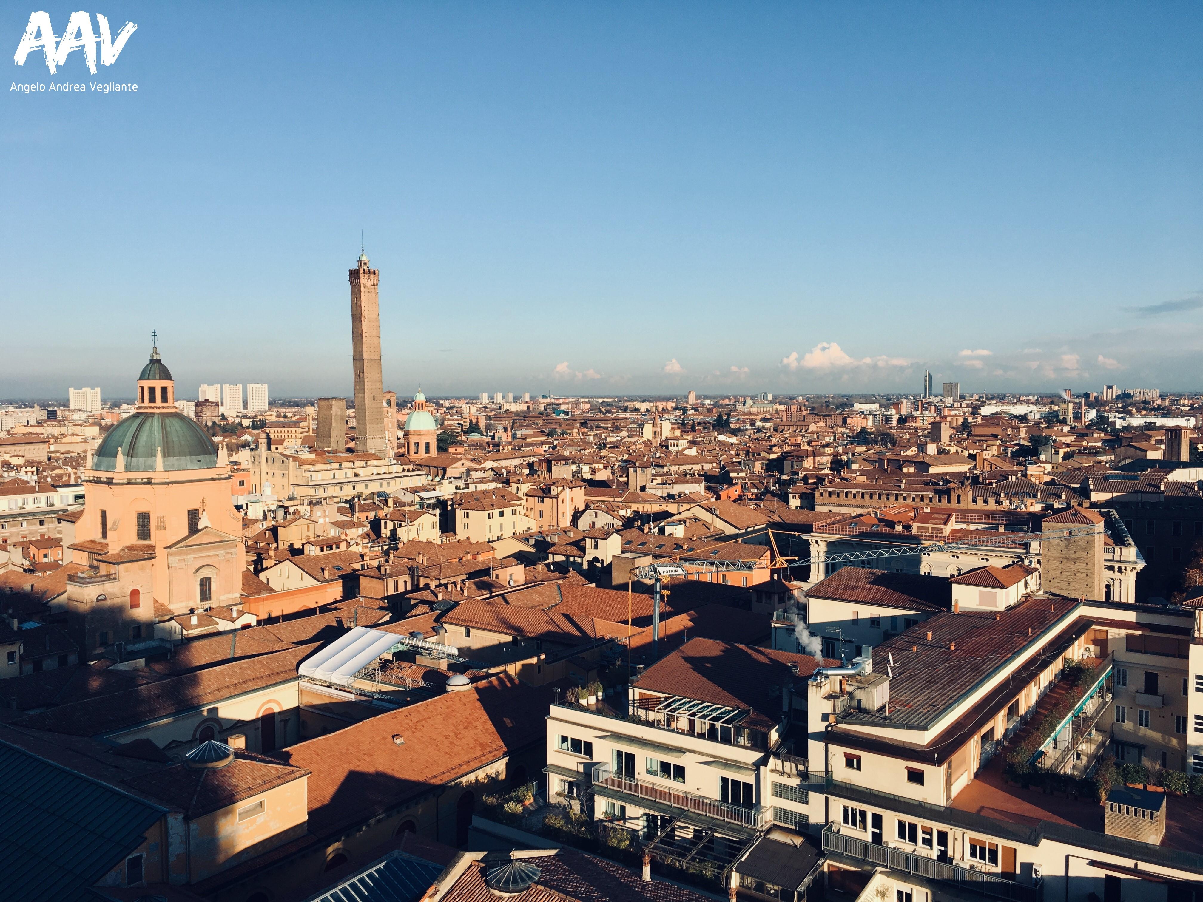 tetti-bologna-emilia romagna-italia-angelo andrea vegliante-colui che viaggia-viaggio-italia-natale