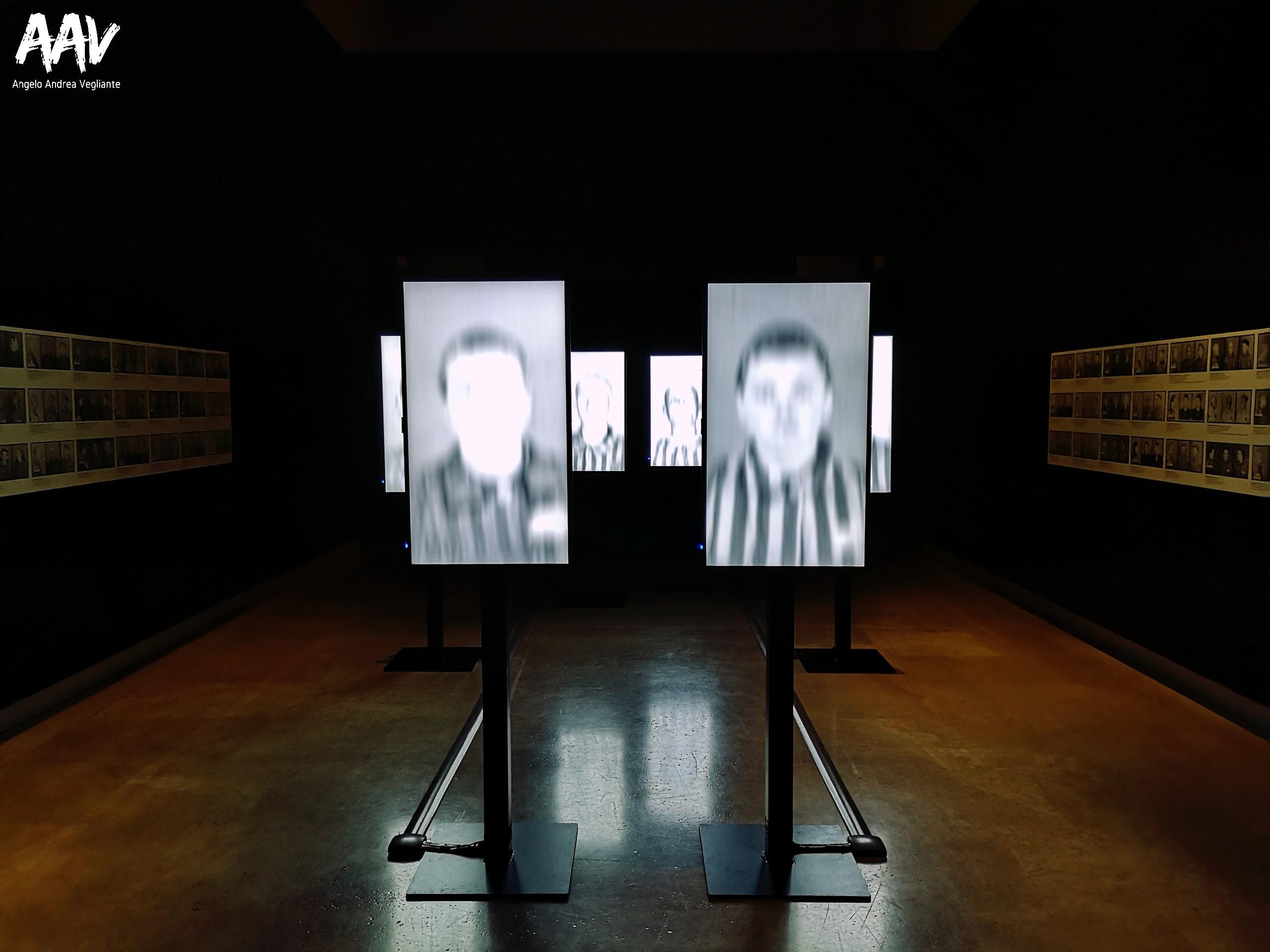 testimoni dei testimoni-Auschwitz-Birkenau-campo di concentramento Auschwitz-Birkenau-campo di concentramento-angelo andrea vegliante-palazzo delle esposizioni-colui che veglia-palazzo delle esposizioni roma