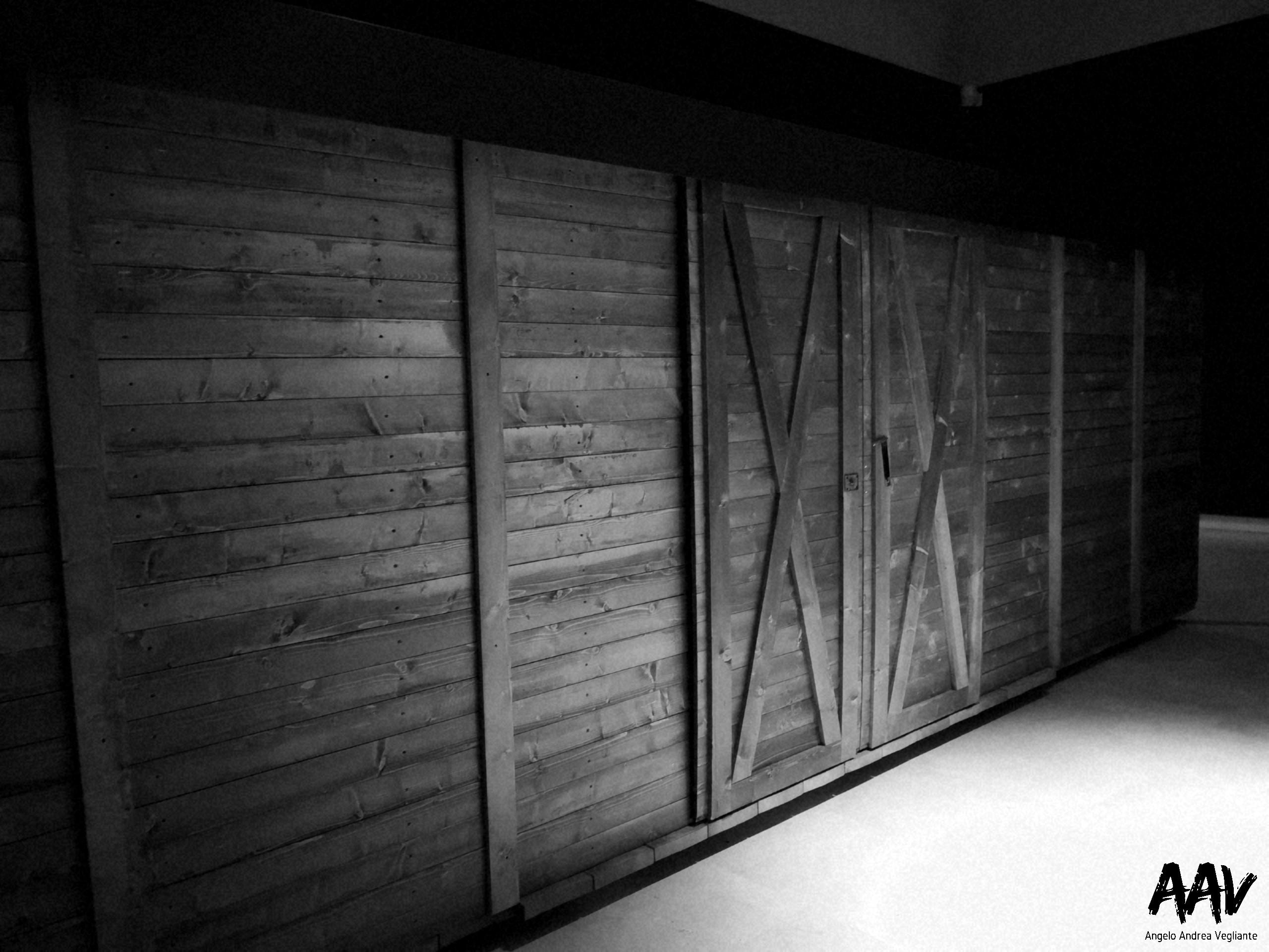 testimoni dei testimoni-angelo andrea vegliante-Auschwitz-Birkenau-campo di concentramento Auschwitz-Birkenau-roma palazzo delle esposizioni-angelo andrea vegliante-colui che veglia