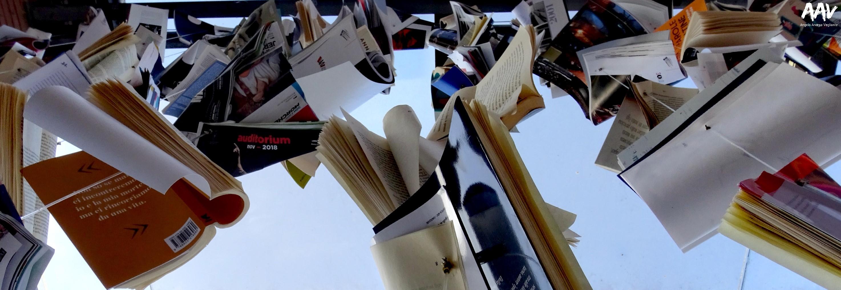 libri come-libri come 2019-auditorium parco della musica-libri come roma-samantha cristoforetti-terrapiattismo-terrapiattisti-angelo andrea vegliante