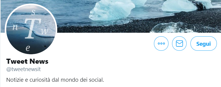 bio tweetnewsit